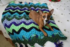 6-Day Kid Blanket by Betty McKnit