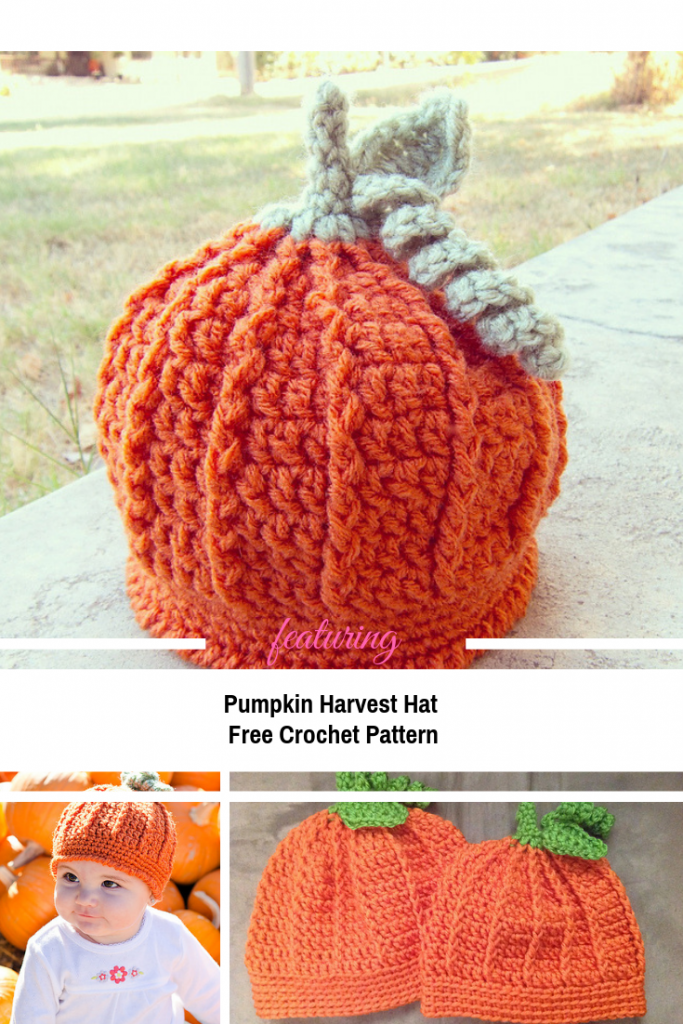 Pumpkin Beanie For Baby & Toddle Crochet Pattern