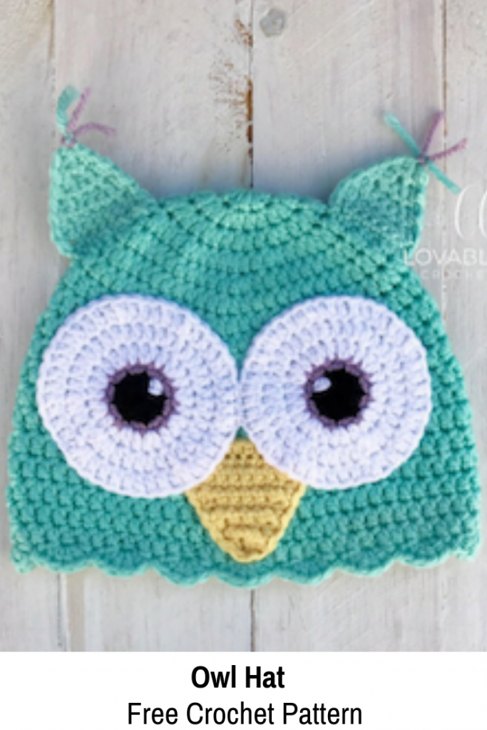 Cute Crocheted Owl Hat Any Toddler Likes To Wear [Free Pattern]