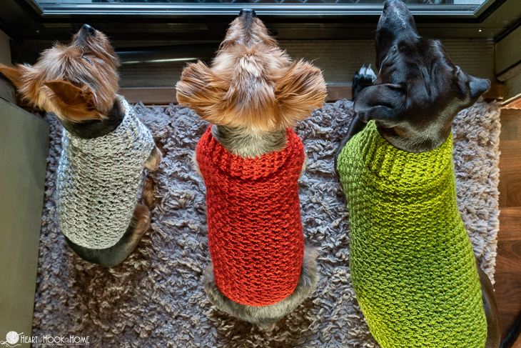 Easy Crochet Dog Sweater Pattern