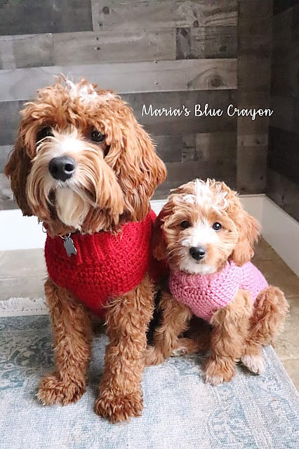 Basic Dog Sweater- Free Crochet Patterns for Dogs
